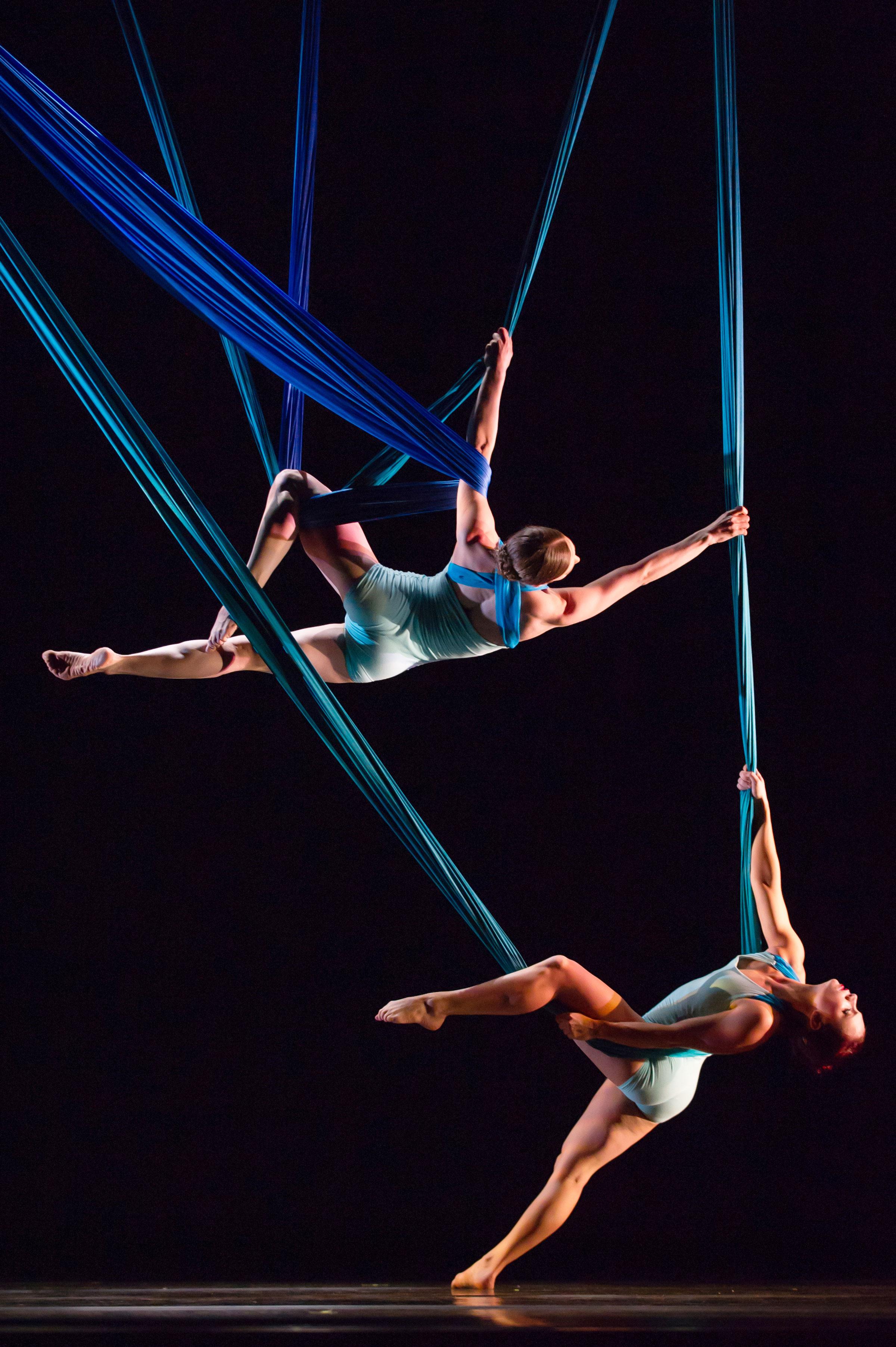Aerial Dance Chicago performs at GVSU Fall Arts Celebration.