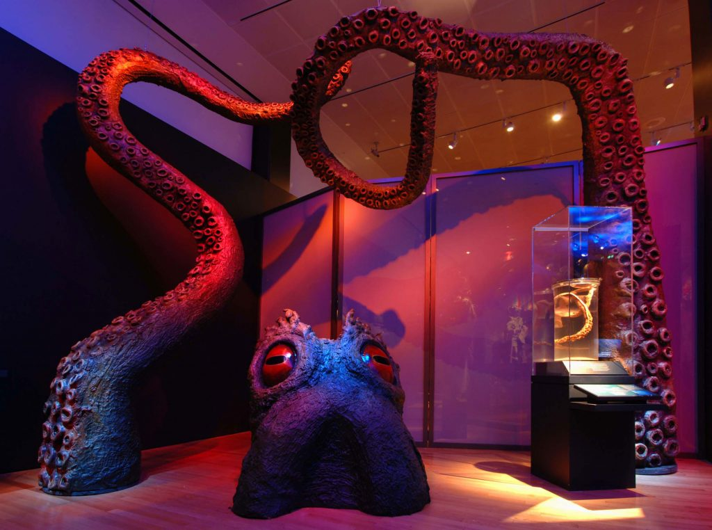 This kraken, a mythical sea monster, has 12-foot-long tentacles that appear to rise out of the floor as if surfacing from the sea. © AMNH/D. Finnin