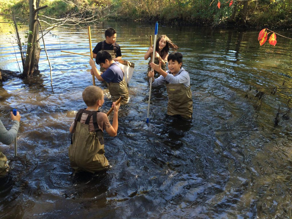 Students participating in WMEAC's watershed program.