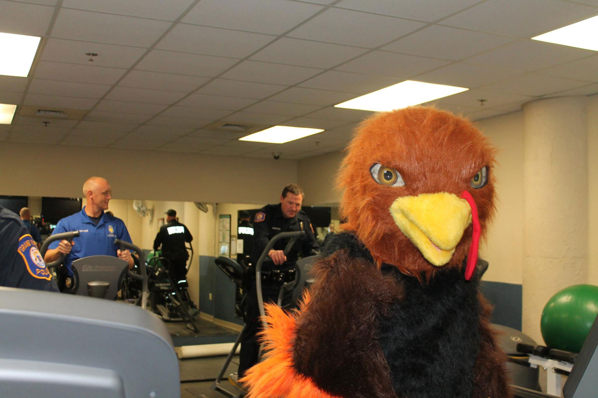 Turkey Trot mascot working out ahead of the annual 5K.