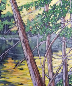 Natural Wonders of the Forest - Christi Dreese