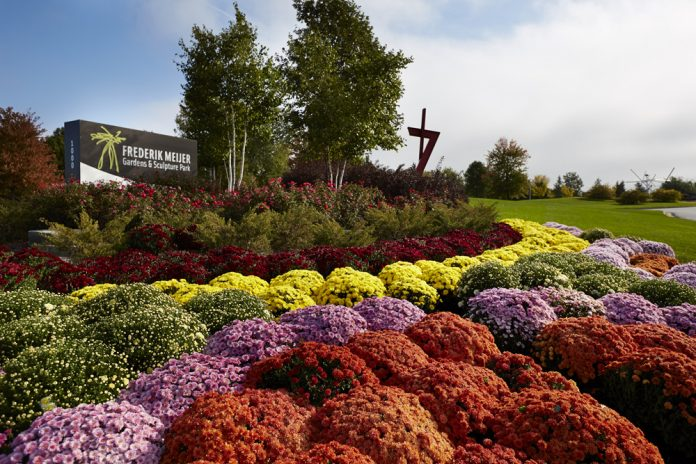 Frederik Meijer Gardens & Sculpture Park Chrysanthemums and More! exhibit